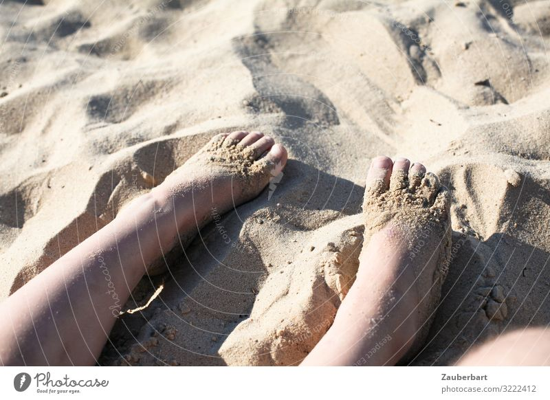 Children's feet in the sand Vacation & Travel Summer Summer vacation Sun Beach Infancy Legs Feet 3 - 8 years Sunlight To enjoy Playing Happy Small Cute Joy