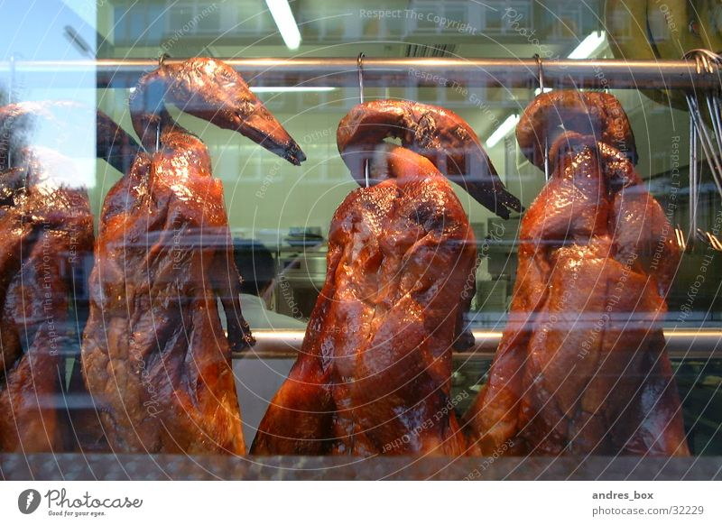 Nutrition Duck Barbecue (apparatus) Shop window Chinese Roasted