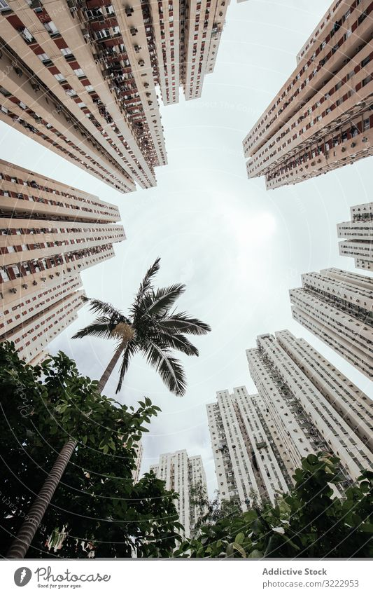 Tropical garden located in city center travel vacation palm architecture urban building plant sky exterior tourism modern holidays contemporary district