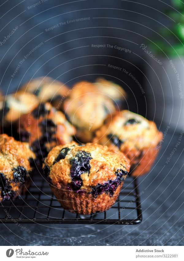Homemade blueberry muffins on cooling rack over dark background. low calories homemade blueberries muffins nobody vertical copy space copy space top food