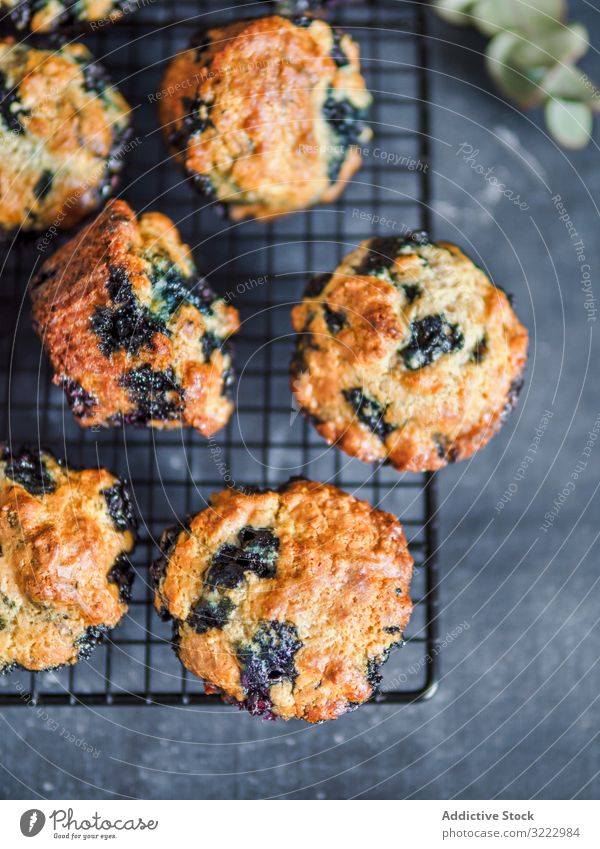 Homemade blueberry muffins on cooling rack over dark background. low calories homemade blueberries muffins nobody top view vertical food dessert cake snack