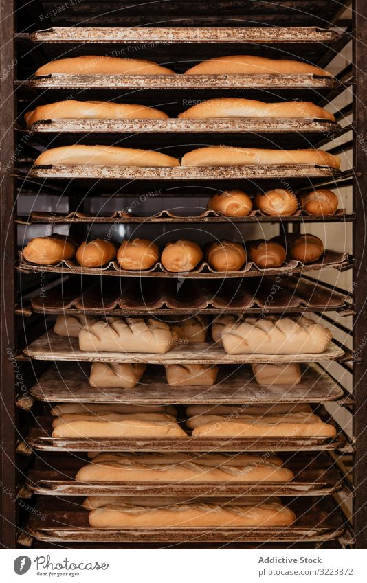 Shelves with fresh bread and buns bakery rack tray shelf pastry food loaf tasty delicious yummy crust many set quality small business preparation gourmet baked