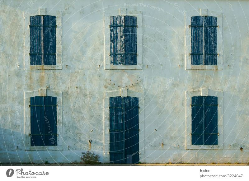 blue-green-grey Deserted House (Residential Structure) Building Facade Window Blue Gray Empty Colour photo Exterior shot Evening Central perspective