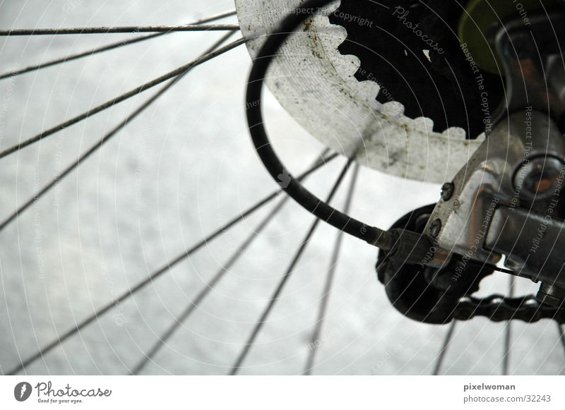 Gear & Spokes Bicycle Photographic technology Gearwheel Chain