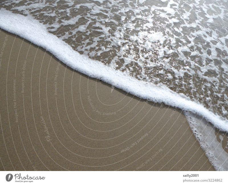 Longing for the sea... Sand Beach Ocean Movement Fluid Glittering Relaxation Waves Surf Sandy beach Foam White crest Calm Meditation Coast Splashing