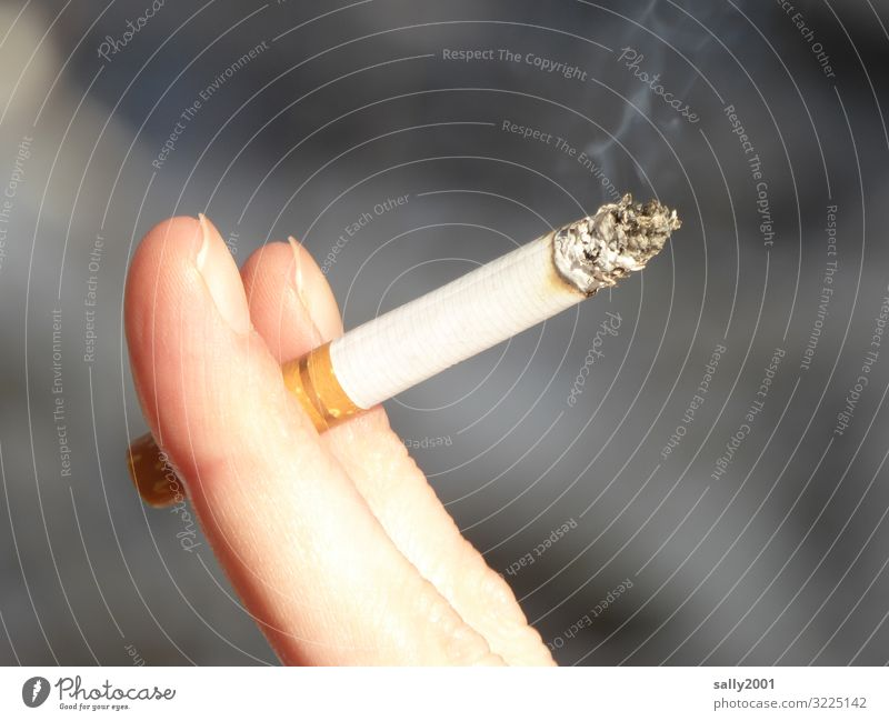 Youth (Young adults) Young woman Relaxation Feminine Fingers To hold on Smoke Smoking Stress Cigarette Addiction Nerviness Unhealthy Ashes Drug addiction