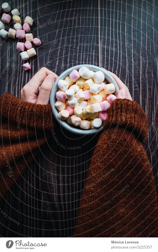 Woman holding a cup of hot chocolate with marshmallows. Dessert Winter Decoration Adults Hand Sweater Hot Soft Yellow Pink White Colour Sugar mug sweet gummy