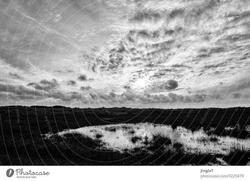 Sky Nature White Landscape Clouds Calm Black Environment Spring Contentment Island Serene Dune Patient Ameland