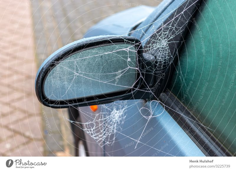 Frozen spiderweb on a car mirror Transport Street Car Glass Metal Plastic Blue Black Logistics Spider's web icy Mirror Colour photo Exterior shot Deserted