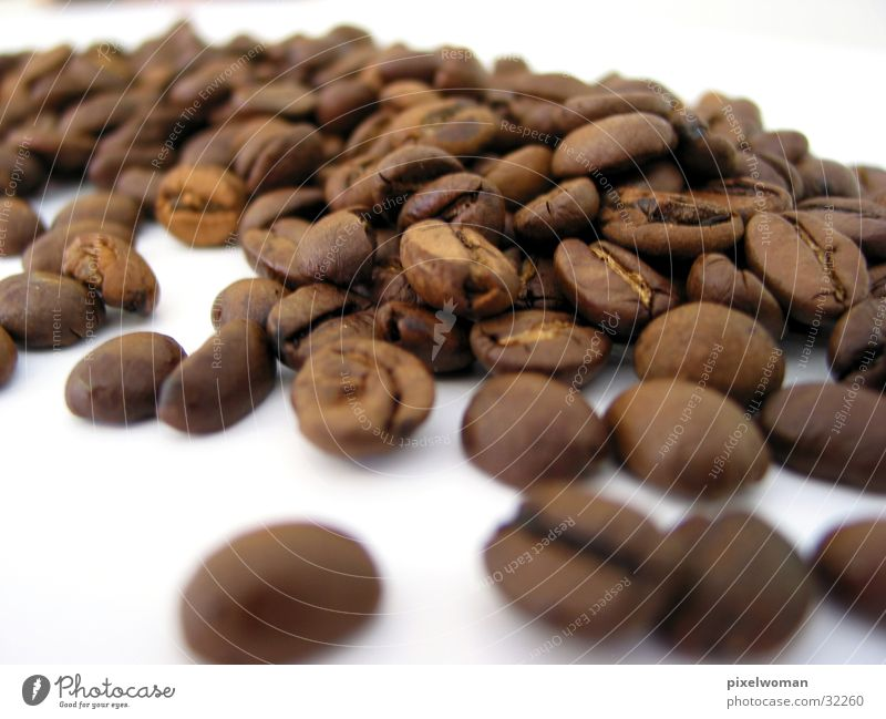 Nutrition Village Beans Coffee bean