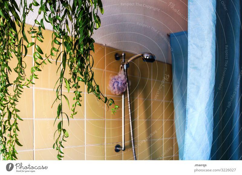 bathroom Lifestyle Flat (apartment) Bathroom Shower head Plant Shower curtain Tile Authentic Retro Blue Yellow Green Clean Old building Colour photo