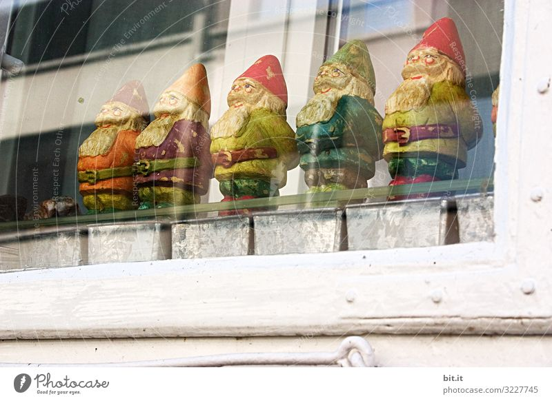 farsighted l Dwarves miss the mountains Decoration Kitsch Odds and ends Garden gnome Souvenir Collection Homesickness Wanderlust Dwarf Captured Colour photo