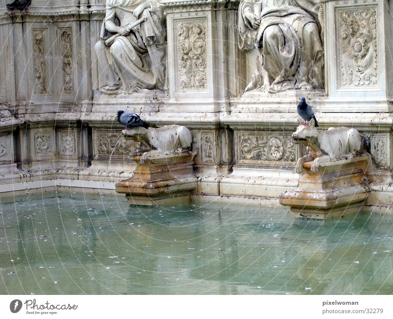 Fountain [wolf] Landmark Wolf Well Italy Architecture Old