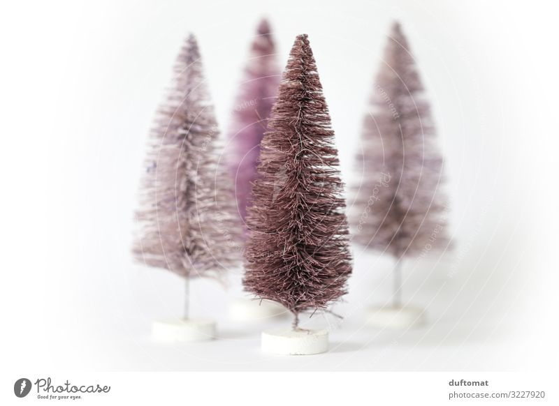 Modern fir trees Harmonious Winter Living or residing Decoration Feasts & Celebrations Christmas & Advent Stage Environment Snow Tree Fir tree Toys Hairbrush