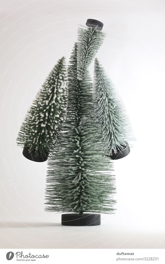 The fir tree man Winter Living or residing Decoration Feasts & Celebrations Christmas & Advent Santa Claus Human being Body 1 Art Puppet theater Tree pareidolia