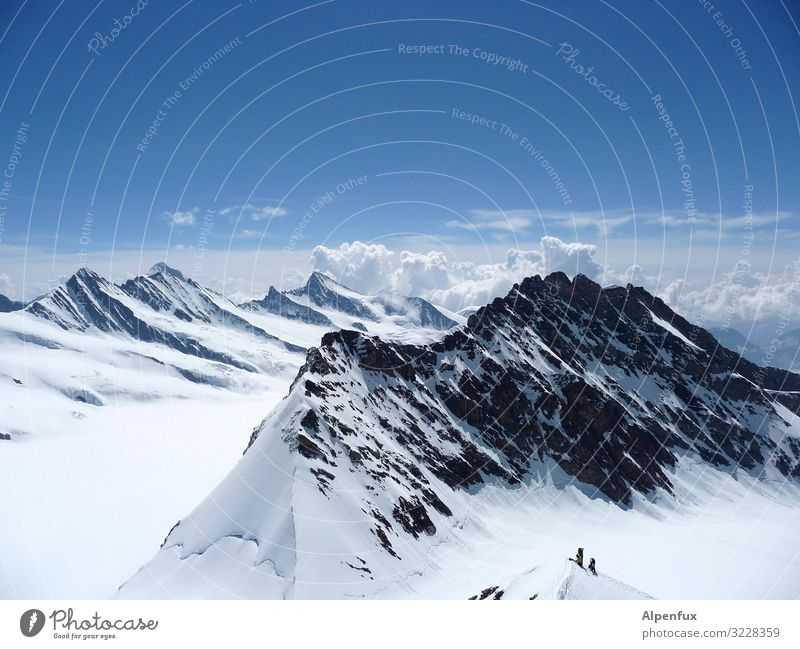 Bernese Oberland Climate Climate change Beautiful weather Ice Frost Snow Rock Alps Mountain Monk (mountain) Peak Snowcapped peak Glacier Happy Enthusiasm