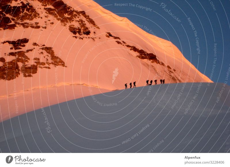 Traffic jam in the morning Climate Climate change Beautiful weather Ice Frost Snow Rock Alps Mountain Bernese Oberland Jungfrau Peak Snowcapped peak Glacier