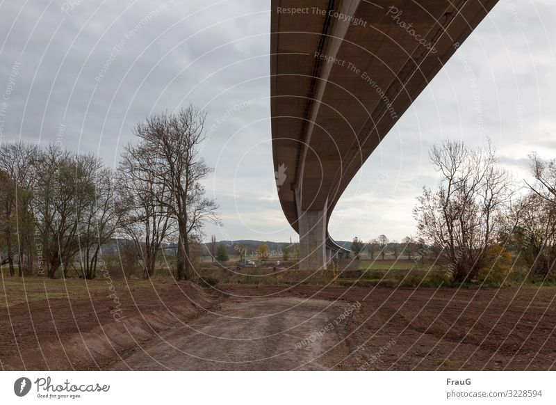 Architecture and nature| Bridge swing bridge Highway motorway bridge Curve Spirited Overpass Concrete Traffic infrastructure Manmade structures