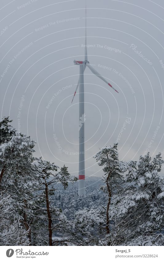 wind power Winter Snow Energy industry Wind energy plant Energy crisis Nature Landscape Animal Sky Clouds Forest Rotate GörauerAnger Pinwheel Colour photo