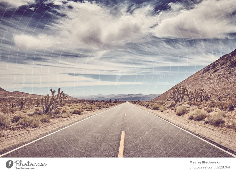 Scenic road in the Death Valley, USA. Vacation & Travel Trip Adventure Far-off places Freedom Expedition Cycling tour Summer Summer vacation Nature Landscape