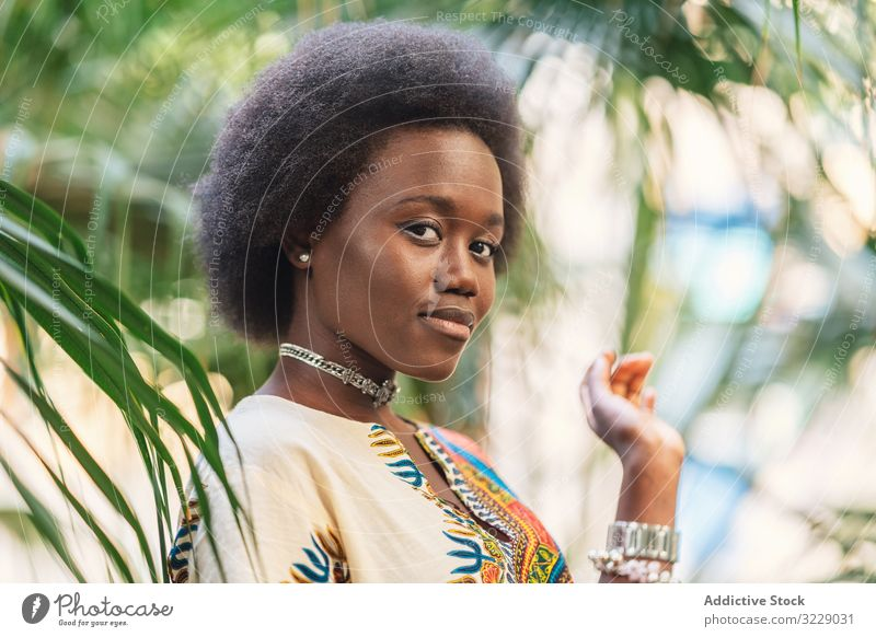 Cheerful African lady amidst palm leaves woman smile african leaf traditional colorful joy female relax ethnic black cheerful happy glad delighted optimistic