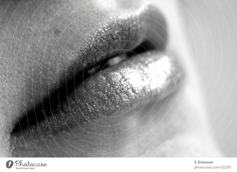 Lips #2 Detail Lipstick Feminine Woman Adults Mouth Glittering Black White Lipgloss Glamor Corner of the mouth Full Mole