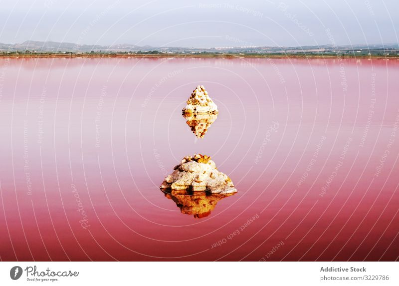 Pink lake with stones reflected in water pink landscape natural beauty rock lagoon travel red destination tourism trip journey unusual salt shore attraction