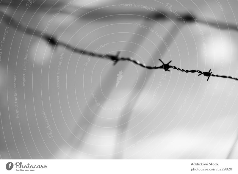 Tense barbed wire metal strain tense boundary security fence crime prison protection camp border war detention crisis razor exterior illegal cross deportation