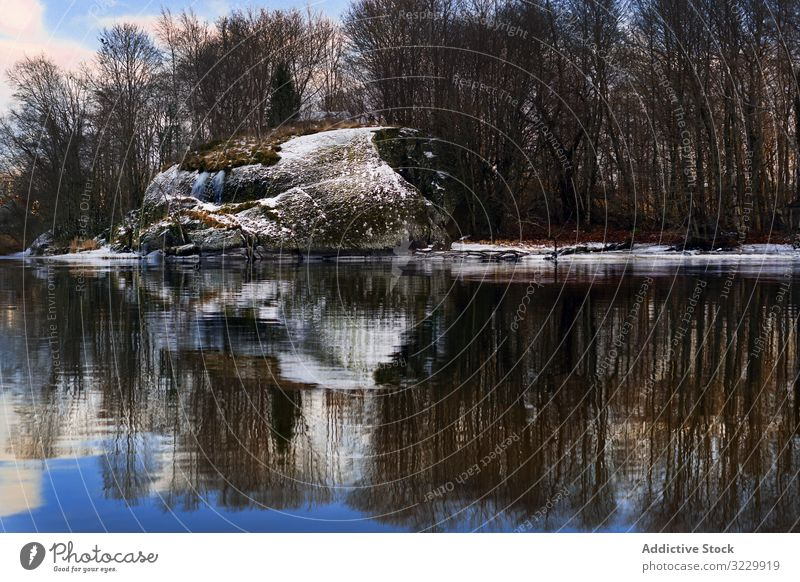 Frosted bank of river with bare trees riverbank frosted riverside snow leafless water norway still reflection stone silhouette blue sky frozen nature snowy lake