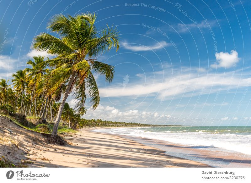 Sky Vacation & Travel Nature Summer Blue Green Water White Landscape Ocean Relaxation Clouds Loneliness Far-off places Beach Coast