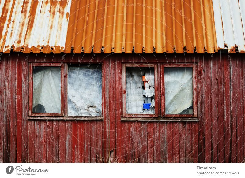 Quite stable and closed Vacation & Travel Fishery Denmark Fishermans hut Facade Window Roof Wood Glass Metal Plastic Old Dirty Blue Red White Emotions