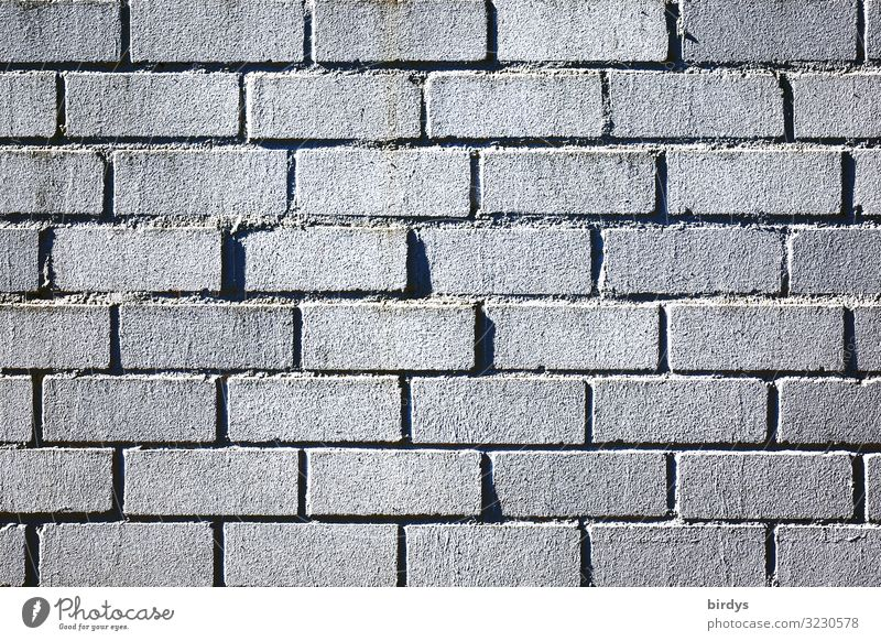 wall Bricklayer Wall (barrier) Wall (building) Brick wall Line Authentic Simple Gray Black Protection full-frame image Background picture Colour photo