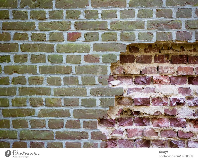 Freedom lures Wall (barrier) Wall (building) Brick wall Authentic Firm Broken Rebellious Brown Gray Pink Emotions Brave Determination Loneliness Claustrophobia