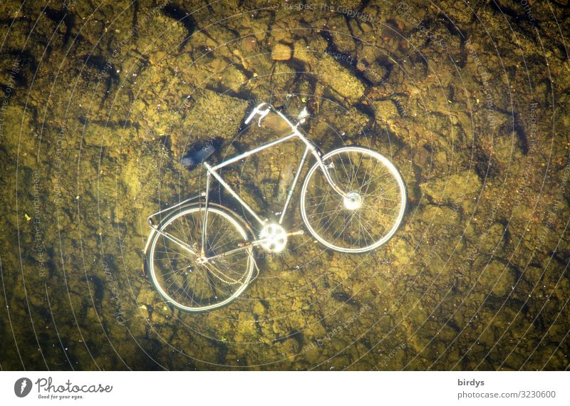 Green Water White Stone Lake Brown Metal Bicycle Lie Gloomy Authentic Wet Broken River Ground Society