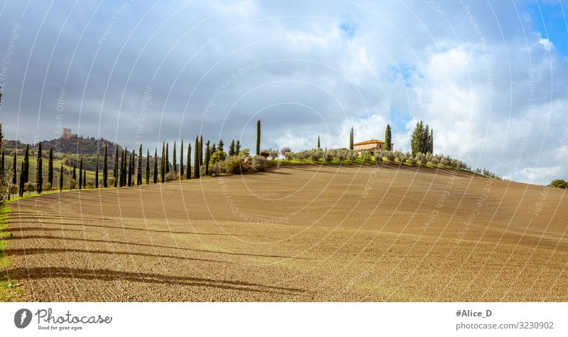 Tuscany landscape Val d'Orcia Italy Vacation & Travel Nature Landscape Elements Earth Clouds Autumn Winter Beautiful weather Cypress Field Hill Peak Europe