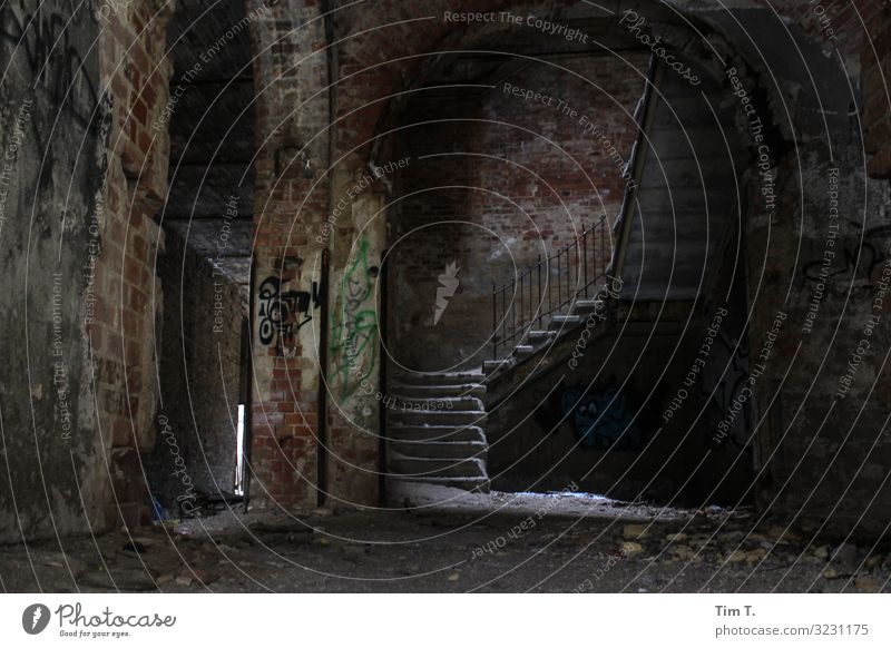 Winter in Beelitz Brandenburg Deserted House (Residential Structure) Ruin Manmade structures Building Wall (barrier) Wall (building) Stairs Cold Time inspire