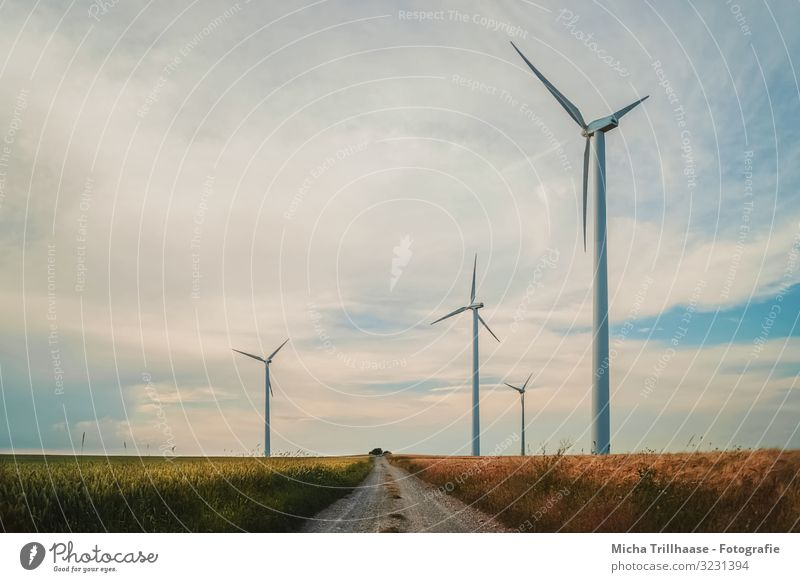 Windmills in the field Agriculture Forestry Energy industry Technology Advancement Future Renewable energy Wind energy plant Nature Landscape Sky Clouds