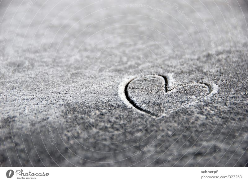 Beautiful Lifestyle Love Snow Happy Gray Friendship Decoration Bright Metal Ice Weather Smiling Birthday Heart Happiness