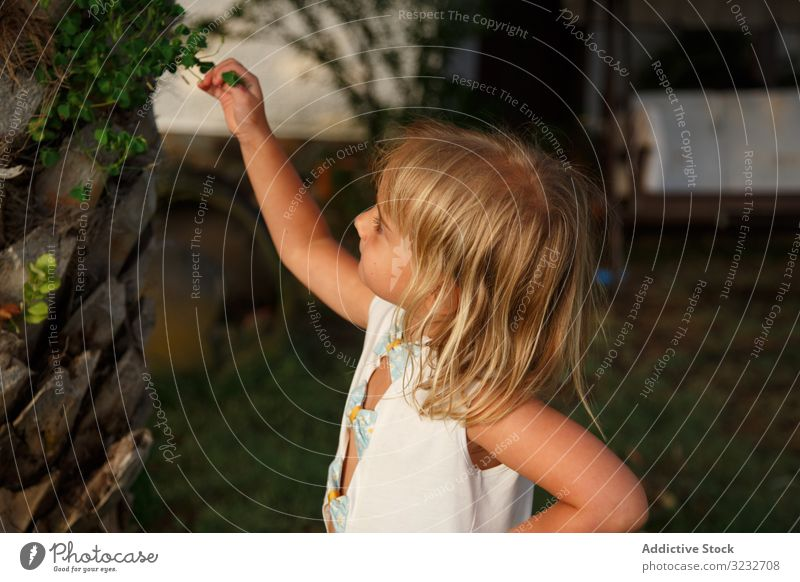 Girl touching leaves on tree in garden girl leaf little kid peaceful hand on waist joy foliage trunk lifestyle rest relax calm tranquil serene cute adorable