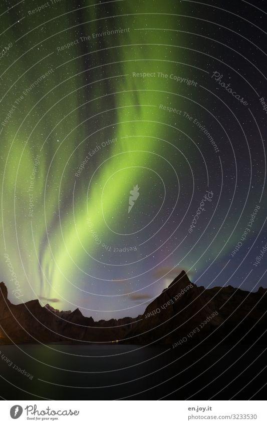 veil dance Vacation & Travel Nature Landscape Night sky Stars Mountain Fjord Reine Norway Scandinavia Lofotes Esthetic Exceptional Green Bizarre Energy Climate