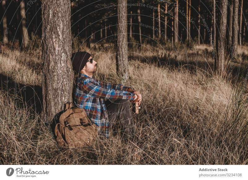 Relaxed tourist resting by tree in forest relaxed man evergreen cold dried sunny autumn season sit hat sunglasses backpack woods young adult lifestyle nature