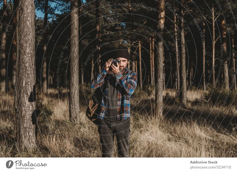 Confident photographer taking picture with camera in sunny forest photography confident evergreen tree grass dried autumn cold sunshine bearded casual