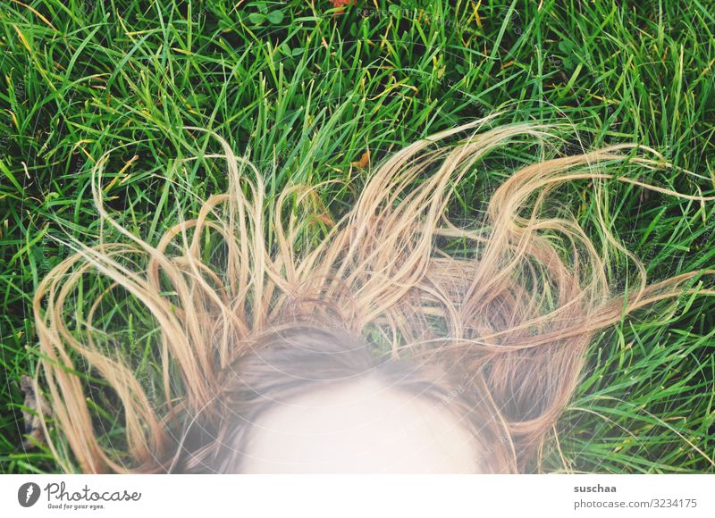 summer hair Summer Grass Hair and hairstyles Hairy Strange Face Forehead Child Girl Exterior shot Lawn Green uncombed Wild Muddled Joy Playing Romp Relaxation
