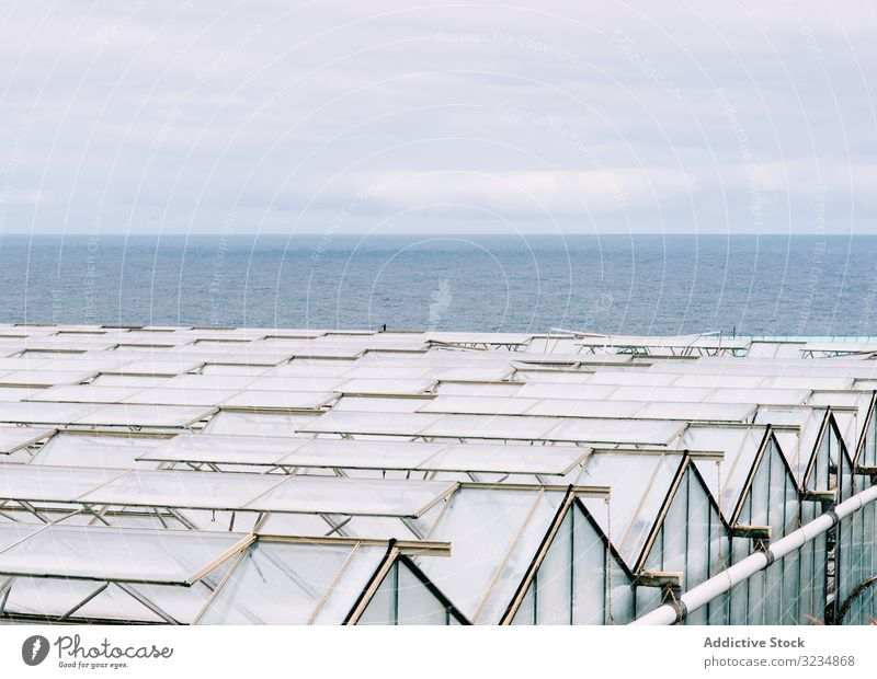 Glass greenhouse roofs in overcast weather farm glasshouse hothouse rural business garden work hotbed horticulture polycarbonate construction propagator