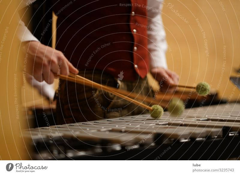 The Percussionist Music Musician Orchestra Passion Glockenspiel Drummer Concert Colour photo Interior shot