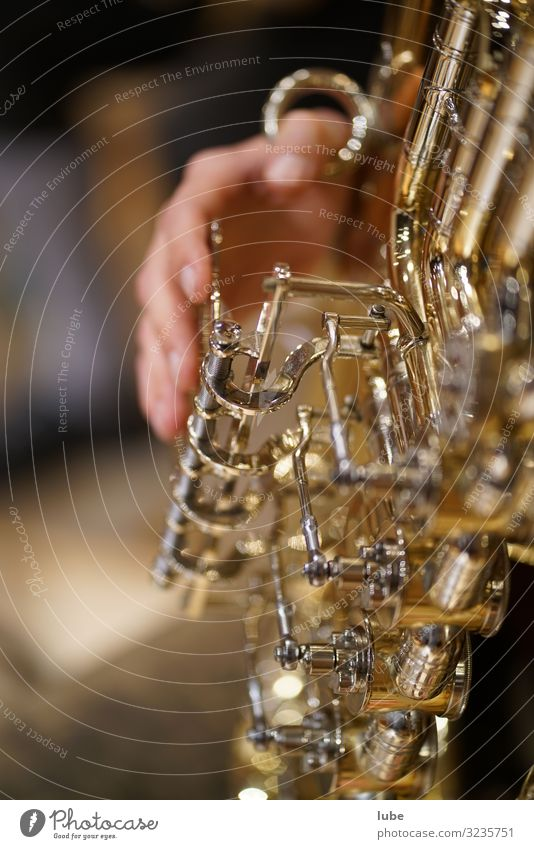 The Tuba Player Art Artist Music Listen to music Concert Stage Musician Orchestra Compulsive gambling Brass band music Musical instrument brass player