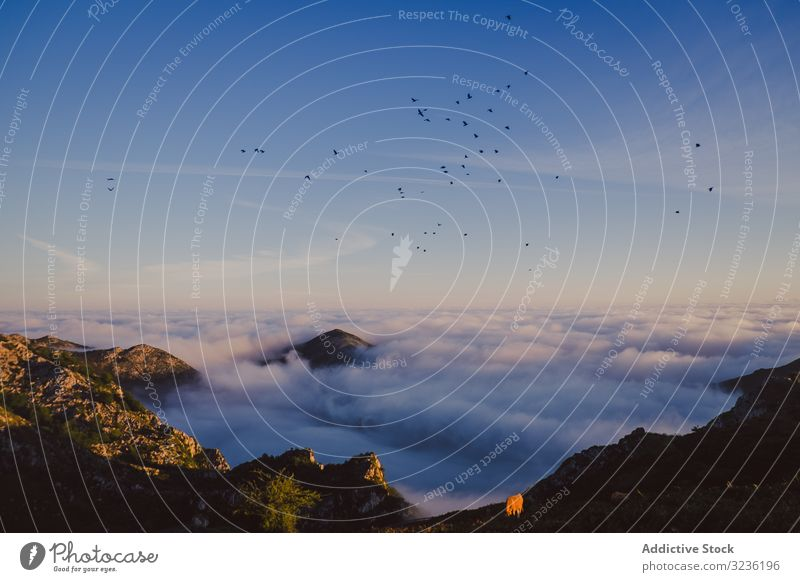 Wonderful view of blue sky above white thick clouds in valley from mountain peak highland spain atmosphere horizon environment height summit rock serenity range