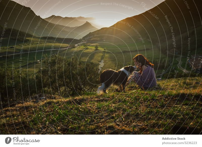 Adult tourist with dog against green forested valley under clear sky in summer mountain woman range border collie hill meadow loyalty height ridge travel doggy