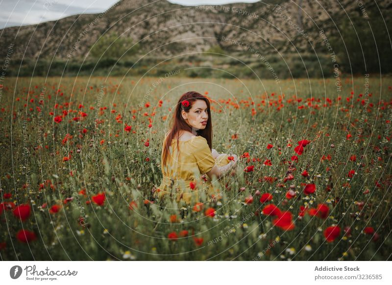 Pretty adult woman looking over shoulder at camera while sitting in field with poppies and daisies flower rural poppy daisy pensive calm red green yellow white