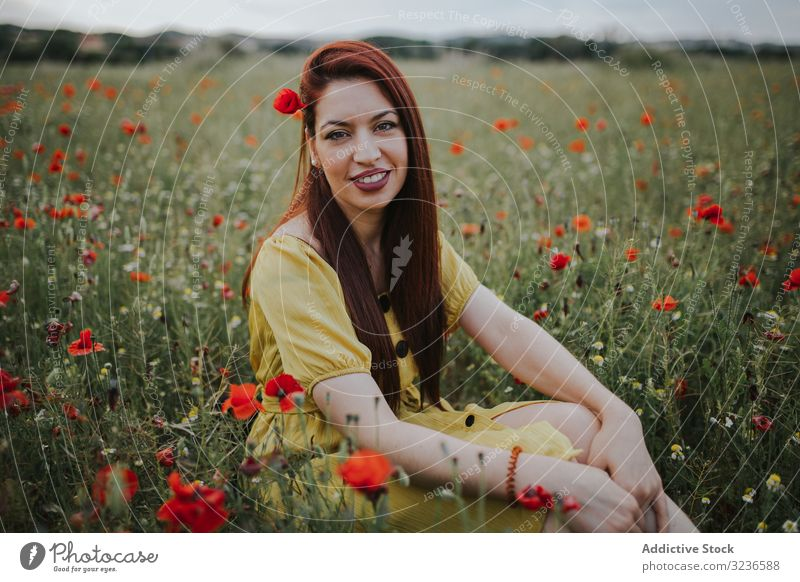 Woman sitting in field with poppies and daisies woman flower rural poppy daisy pensive calm red green yellow white effortless charm red hair chamomile